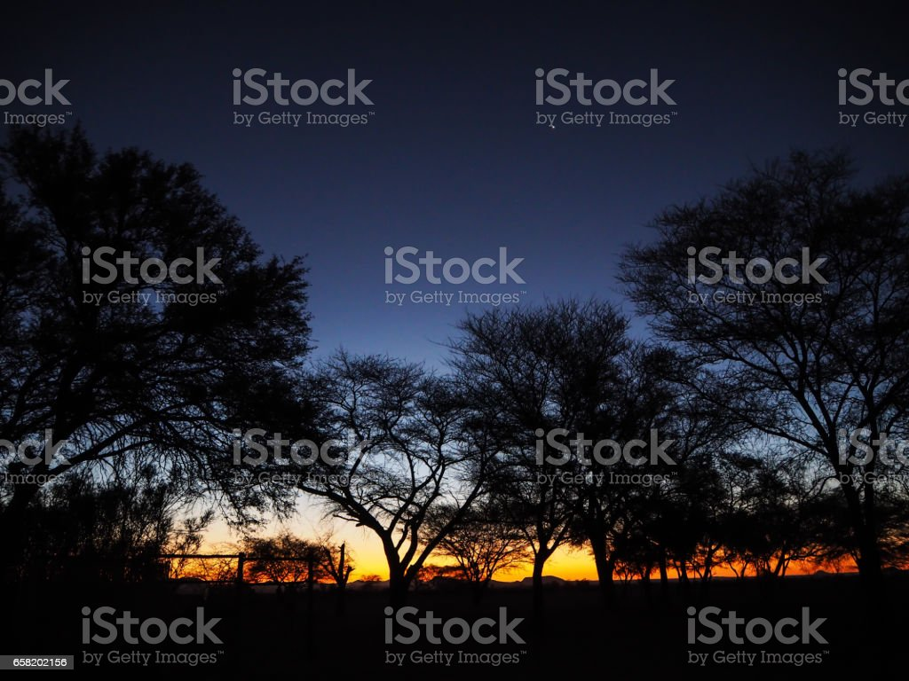 Watching sunset and group of trees silhouette in Solitaire while the star start to appear stock photo