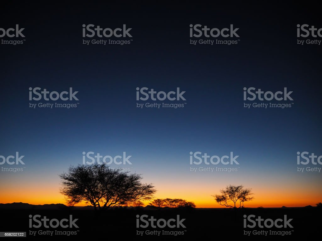 Watching sunset at Solitaire with trees silhouette while the star start to appear stock photo