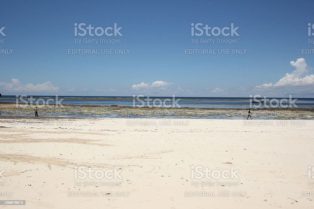 Watching the Beach and Ocean royalty-free stock photo