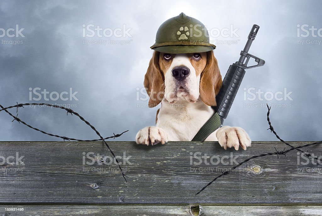 watchman stock photo