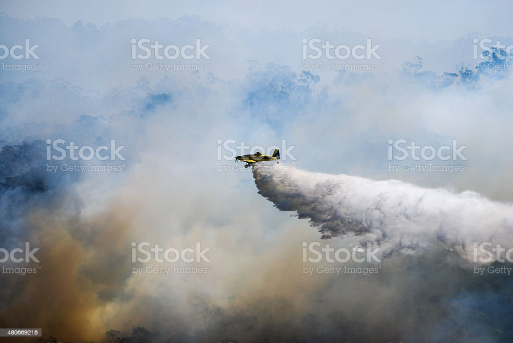Water bomber puts out a wild fire stock photo