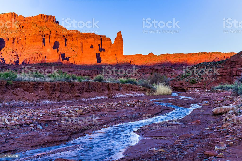 Water Brings Precious Life to the Desert stock photo