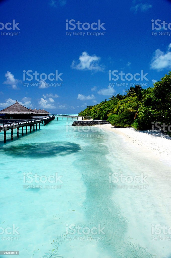 Water bungalows in a tropical paradise stock photo