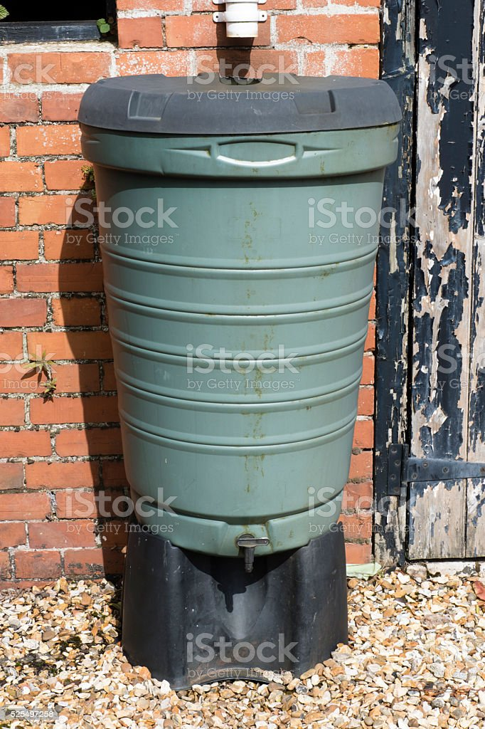 Water butt fed by a downpipe against a shed wall stock photo