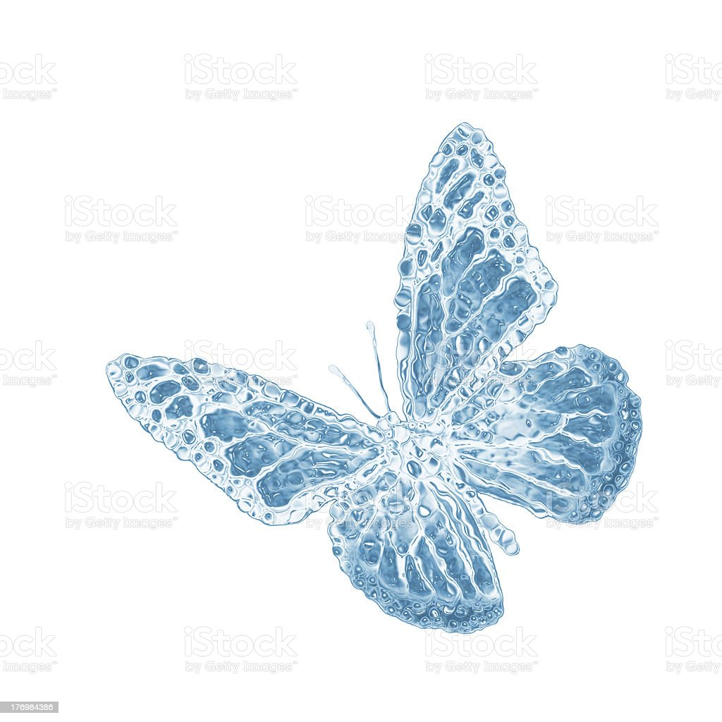 water butterfly royalty-free stock photo