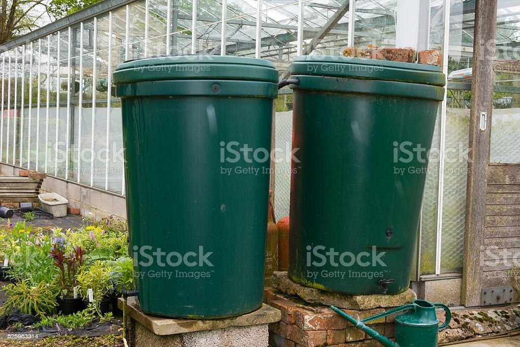 Water butts outside a greenhouse for water storage stock photo