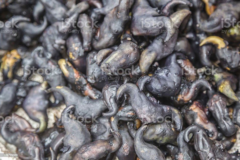 water chest nuts royalty-free stock photo