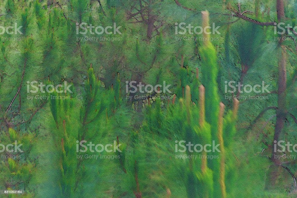 Water color filter gallery, The forest pines concept stock photo