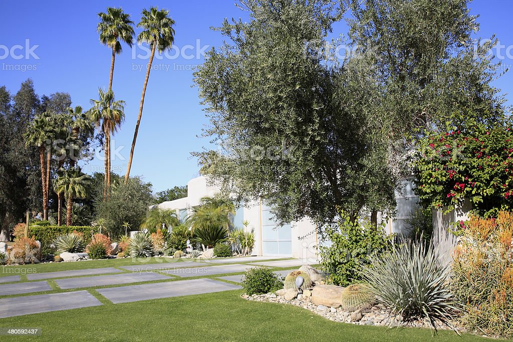Water Conservation And Ideas For The Front Yard stock photo