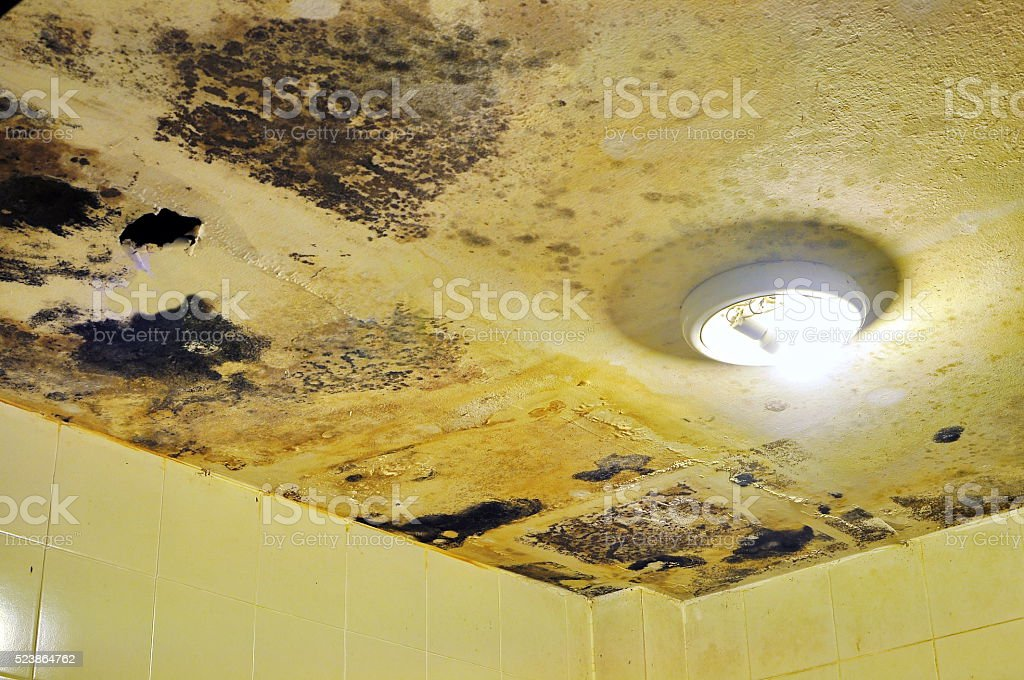 Water damaged ceiling and Fungus in bathroom stock photo