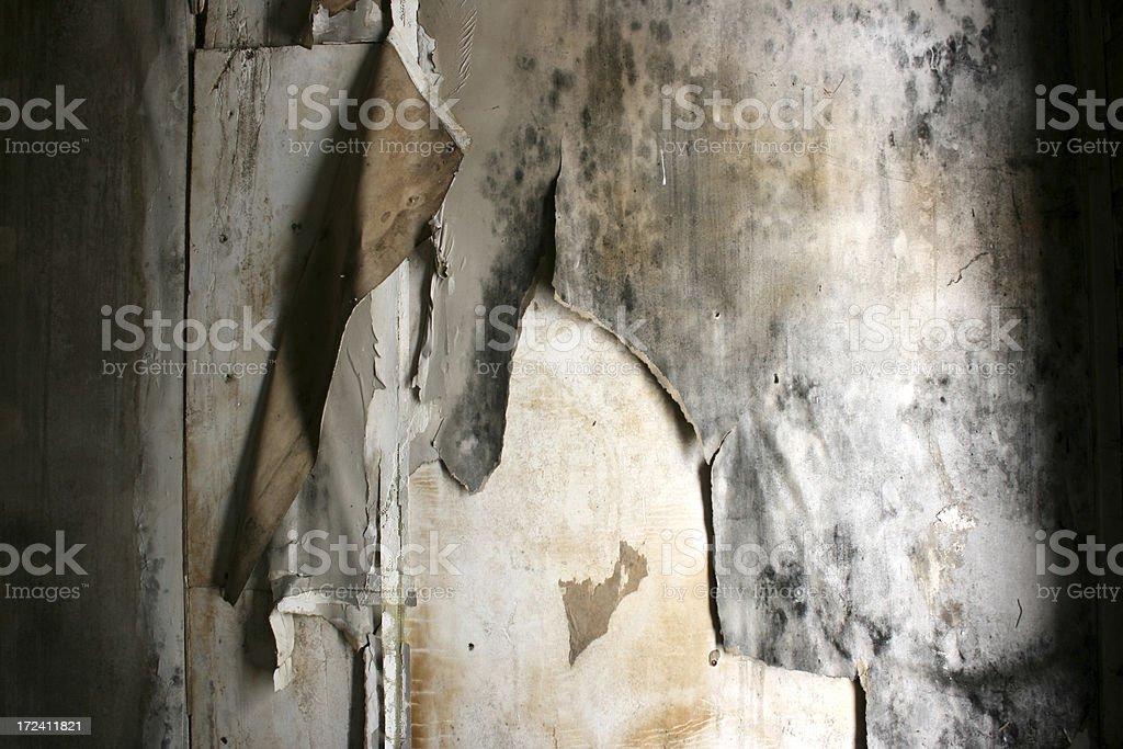 Just water damaged sheetrock and peeling wallpaper. I\'ve more