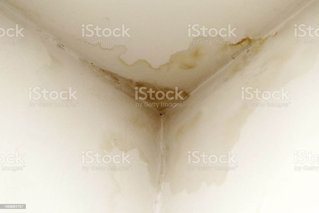 Water damaged moldy wall stock photo