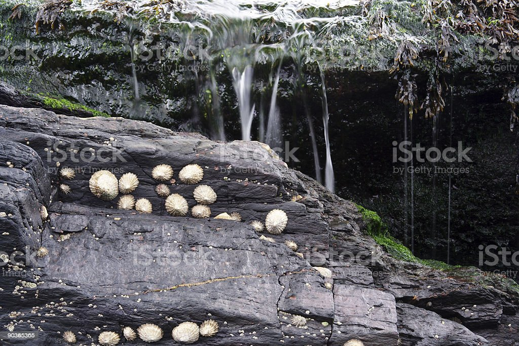 Water Dripping Over Rocks stock photo