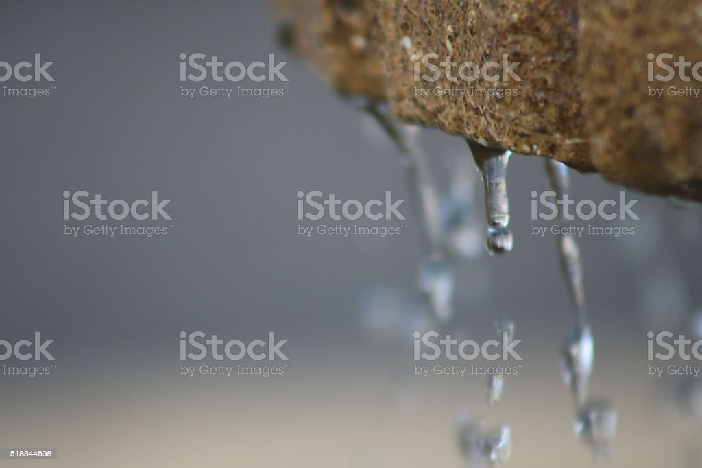 Water dripping stock photo