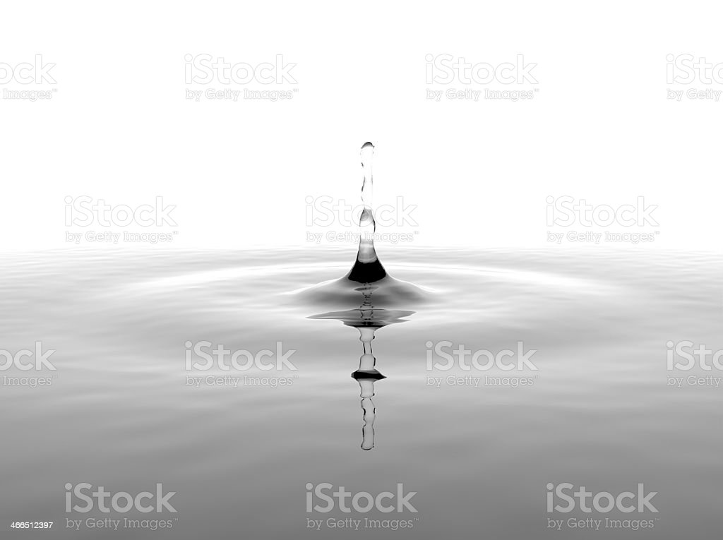 Water Drop on White Background royalty-free stock photo