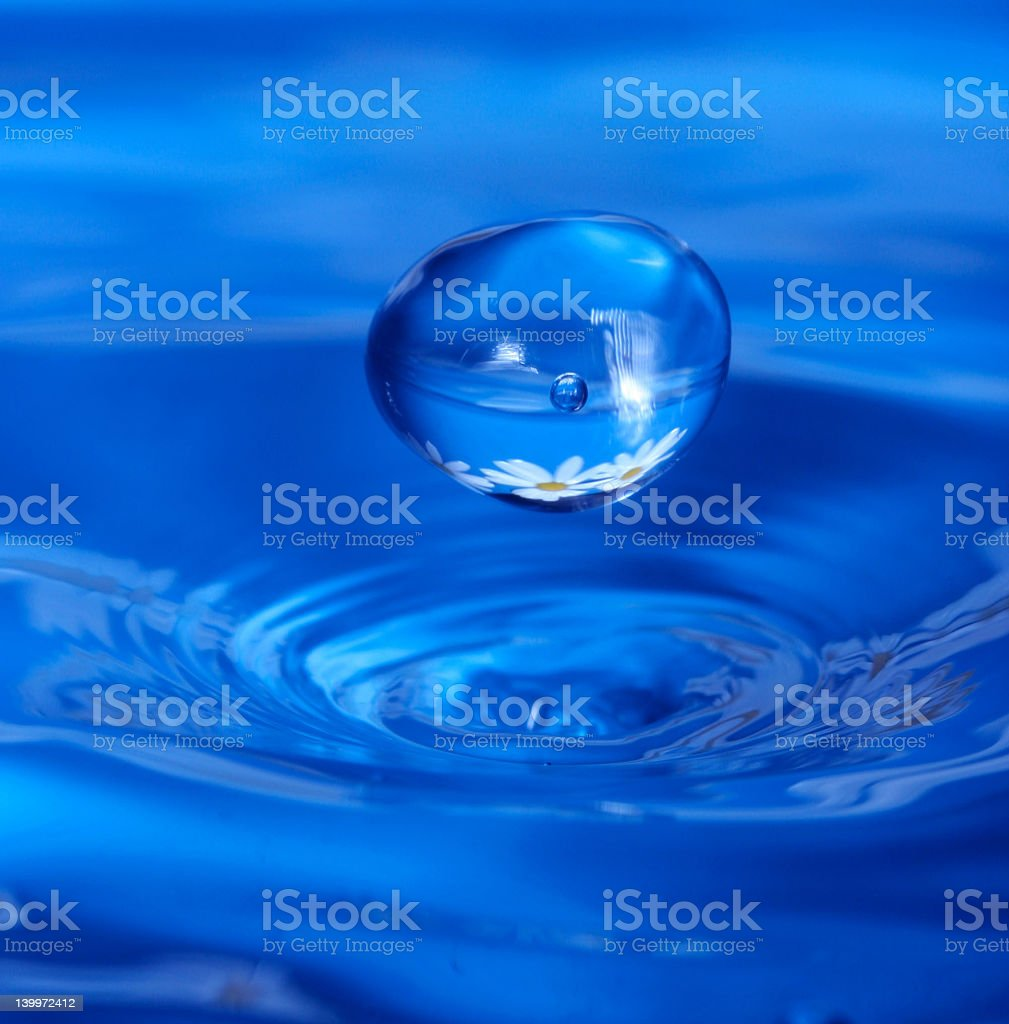 A water droplet falling into water royalty-free stock photo