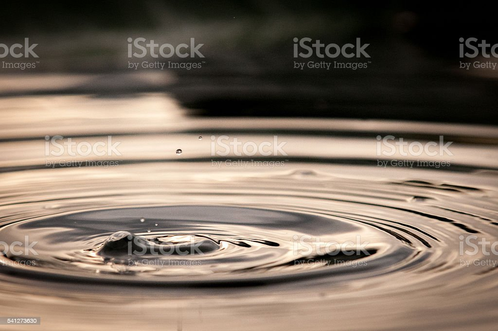 Water Droplet Hitting Surface Of Wetland stock photo