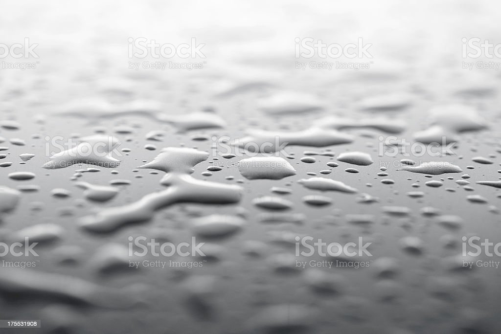 water drops on a car hood royalty-free stock photo