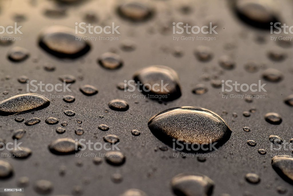 Water Drops on Hood of Automobile stock photo