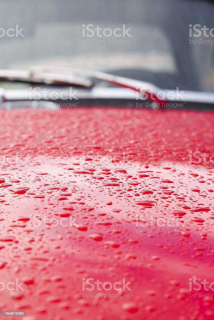 Water drops royalty-free stock photo