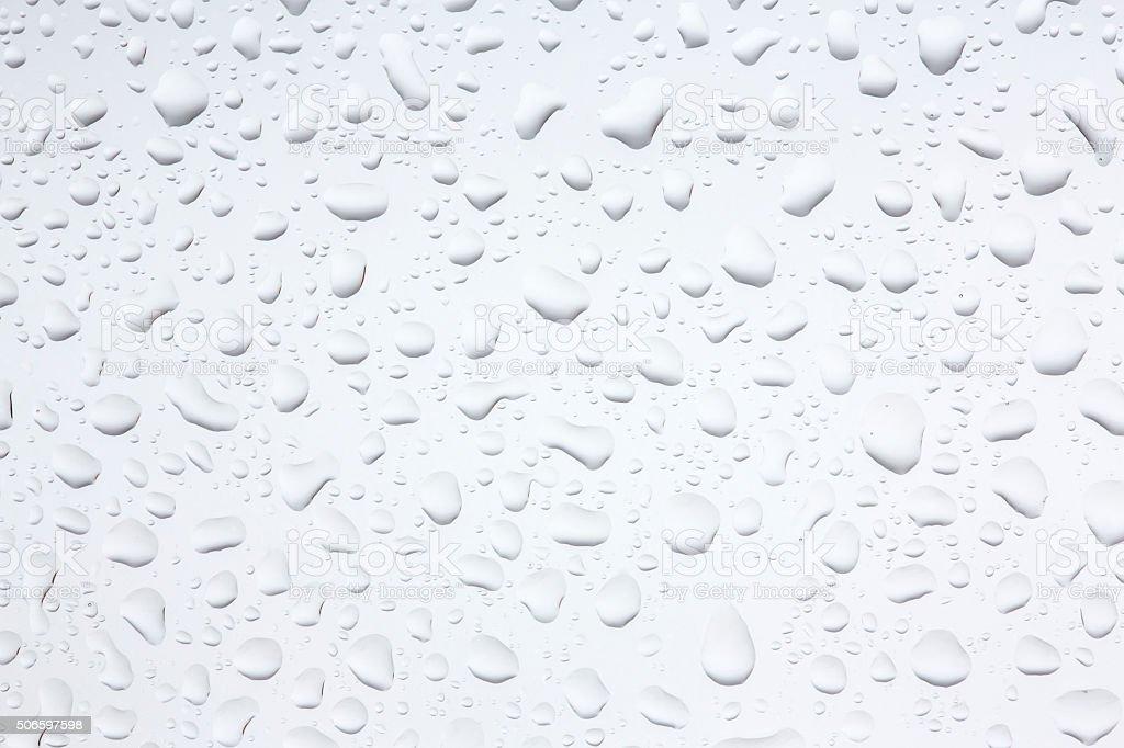 Water Drops Rain Drops Background. stock photo