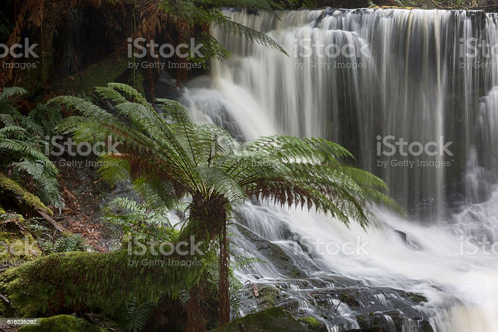 Water Fall Beauty stock photo