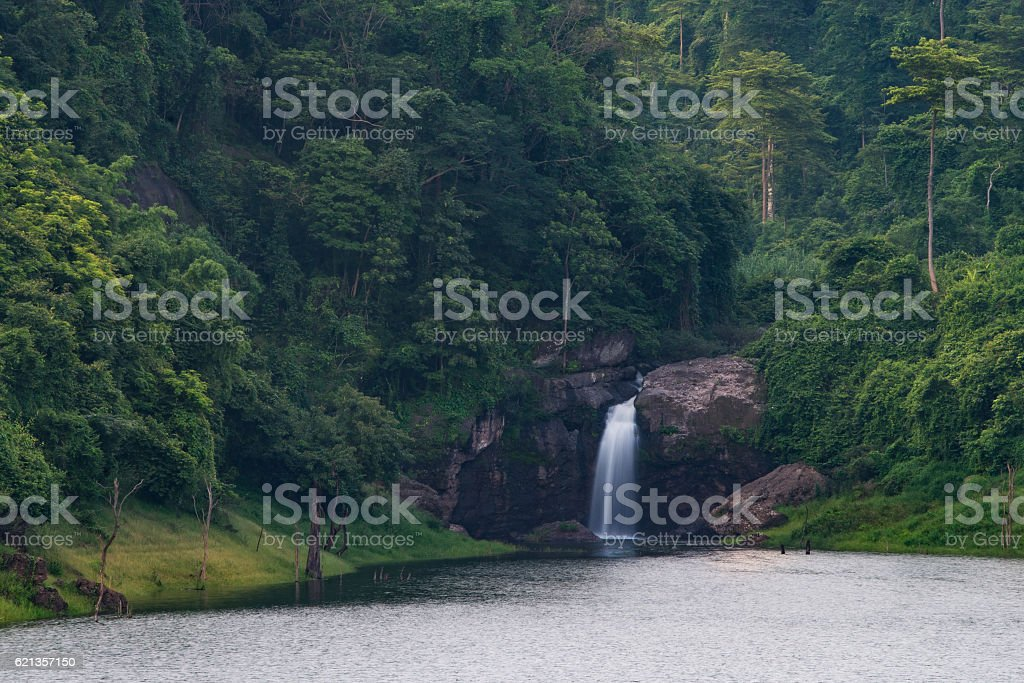 water fall in nature stock photo