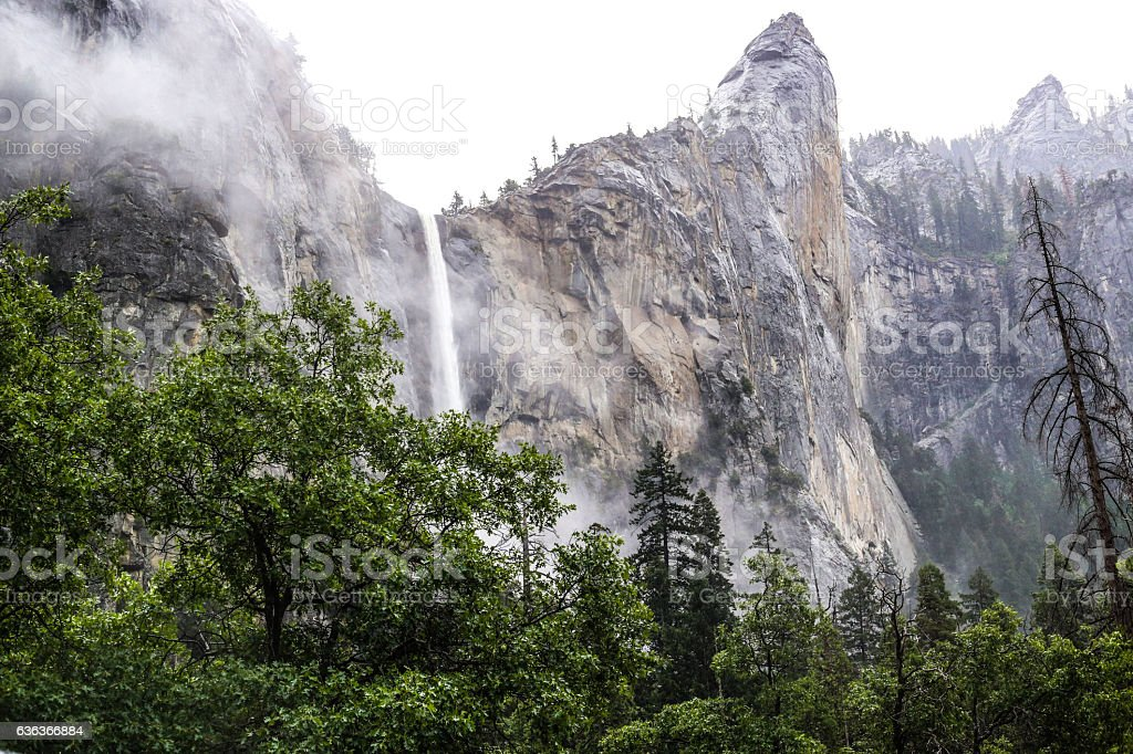 Water Fall on a Misty Day stock photo