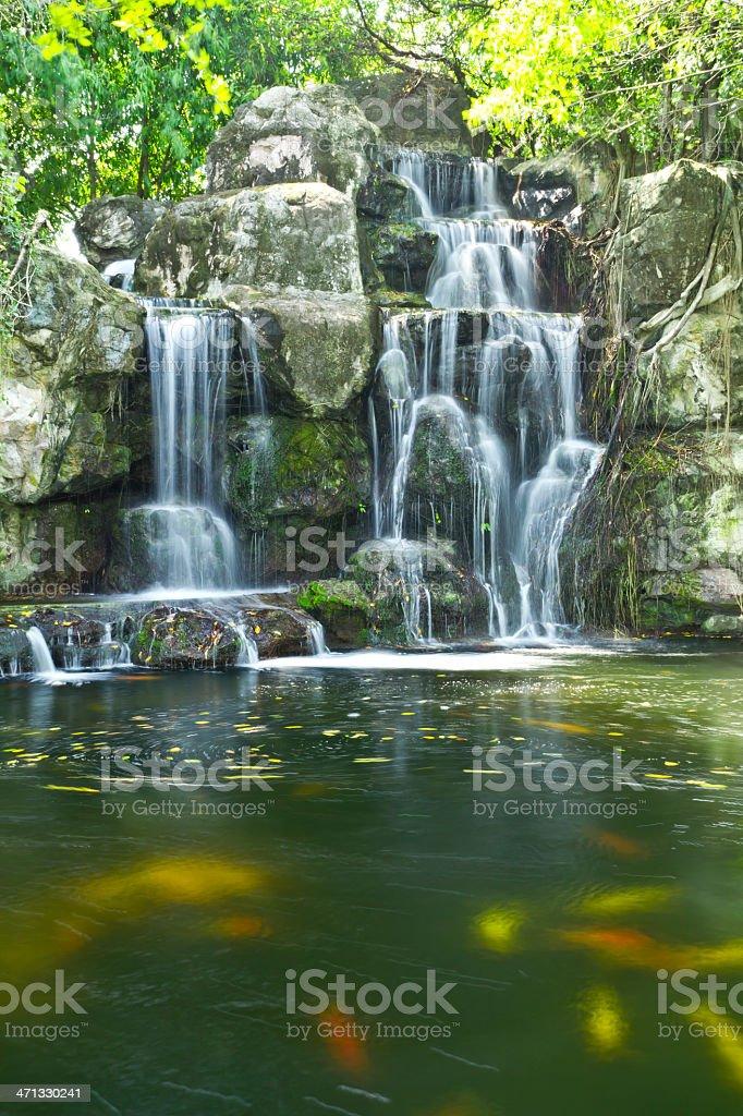 Caduta di acqua foto stock royalty-free