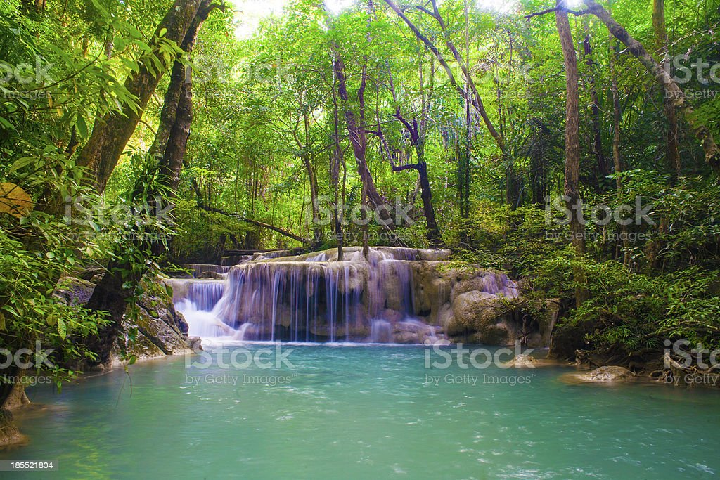 Water fall spring season located in deep rain forest royalty-free stock photo