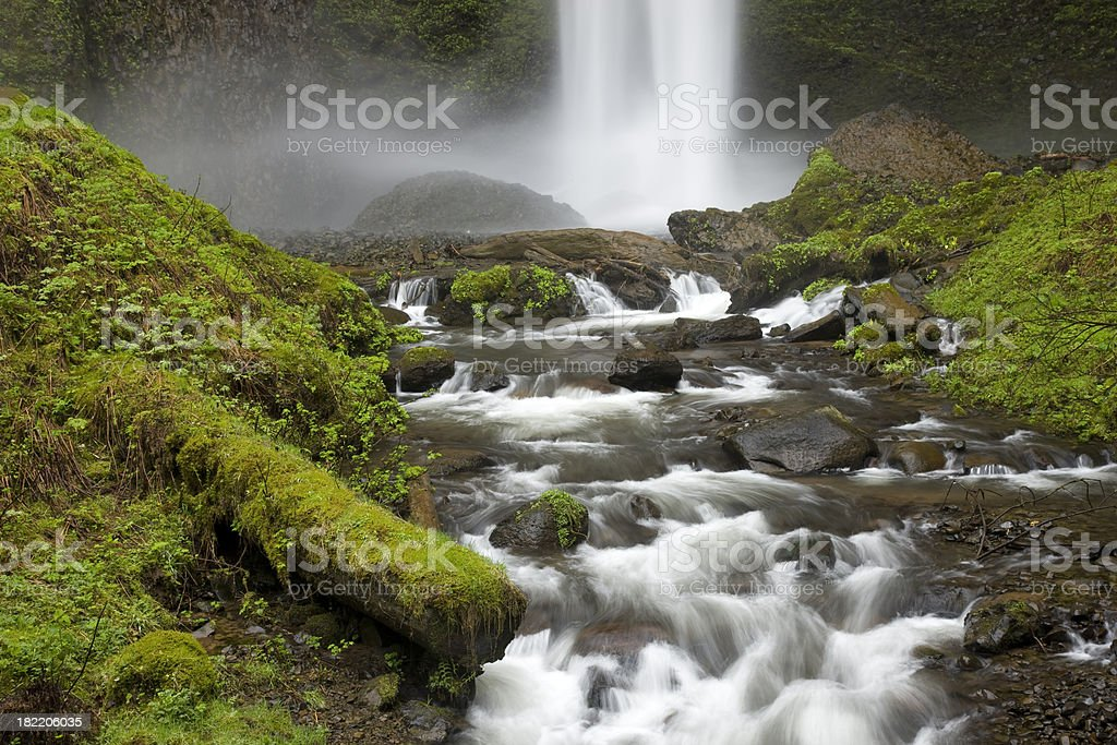 Water flowing over moss covered rocks surrounded by lush foliage royalty-free stock photo