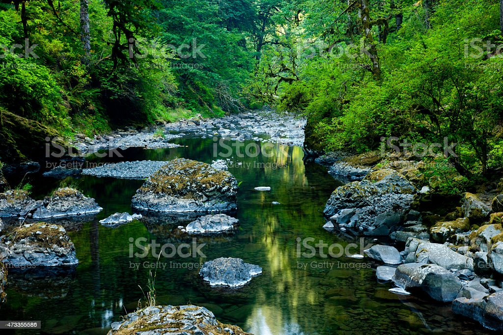 Water flows through a moss covered gorge above a waterfall stock photo