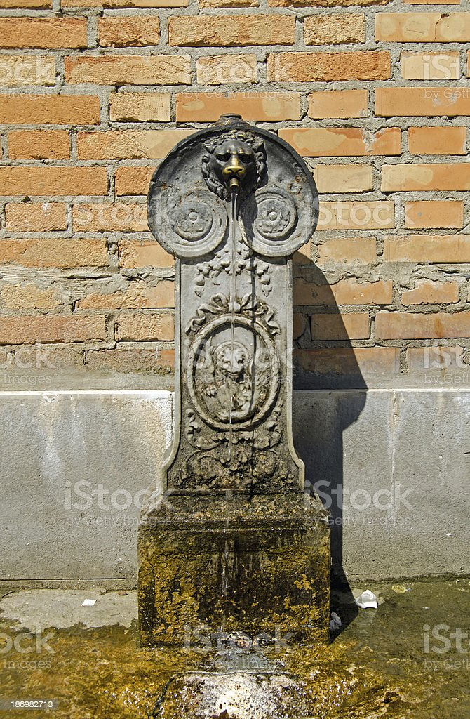 Water fountain, Venice royalty-free stock photo