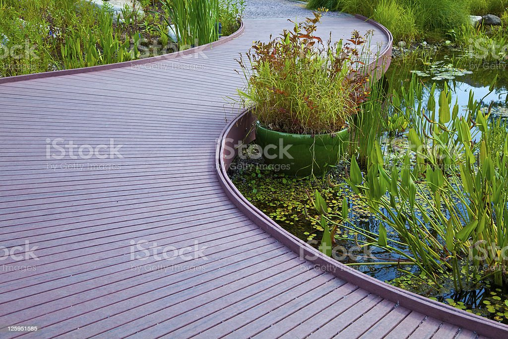Water Garden Pathway royalty-free stock photo