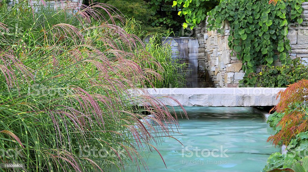 Water Garden stock photo