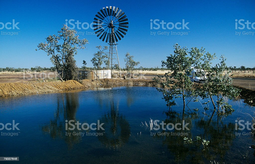 Water hole stock photo