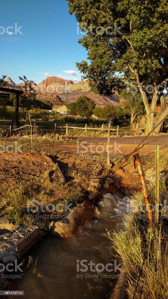 Water in irrigation canal tall cottonwood tree near Rockville Utah stock photo