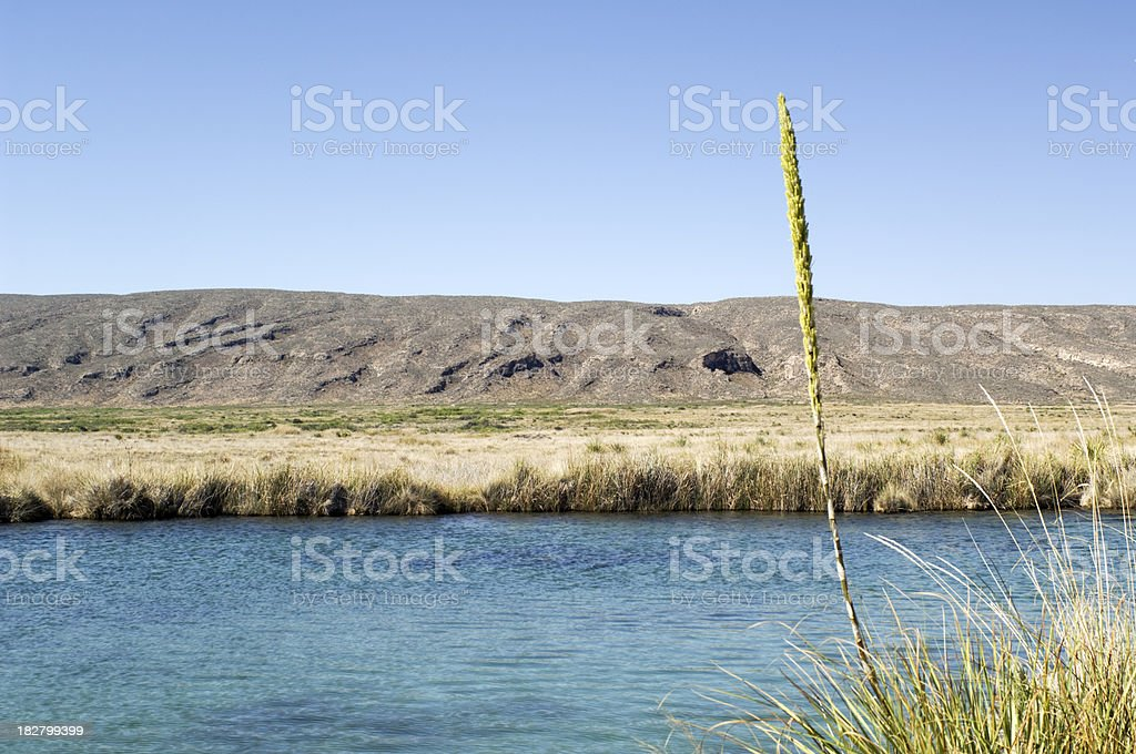 Water in the Desert stock photo