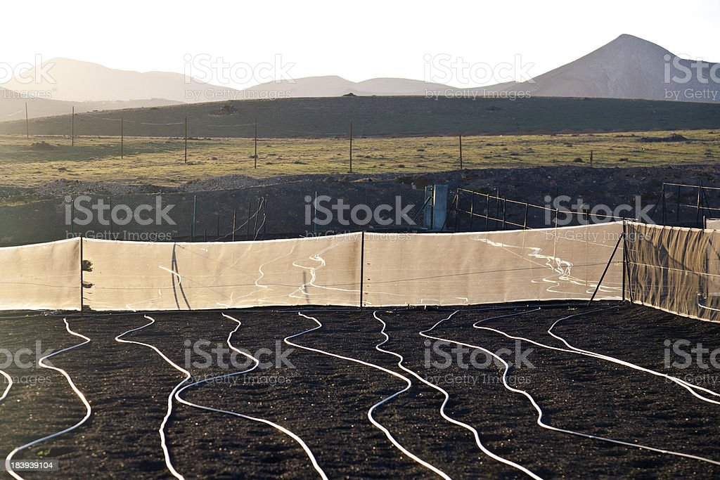 water irrigation system on a field with lapili earth royalty-free stock photo