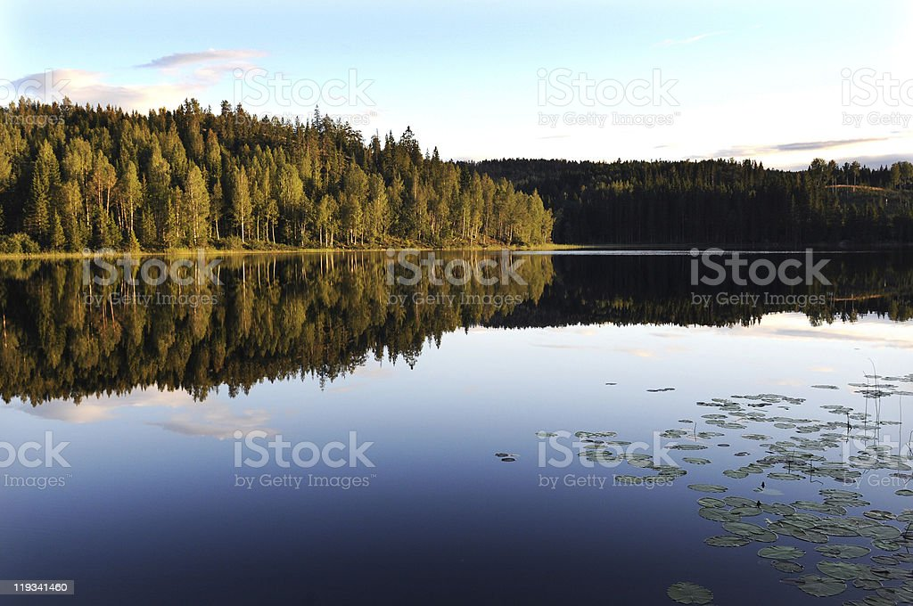 water lake mirror royalty-free stock photo