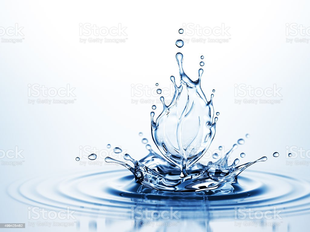 Water Leaf Splash stock photo