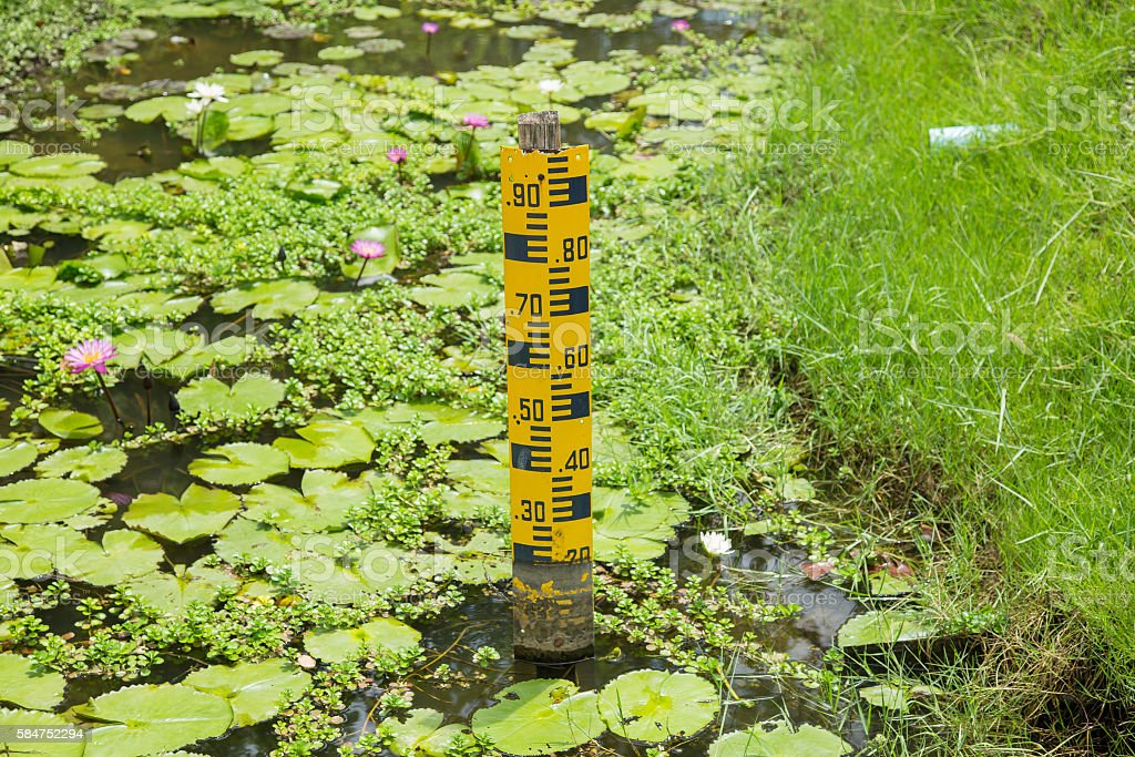 water level in the park, water volume in swamp park. stock photo
