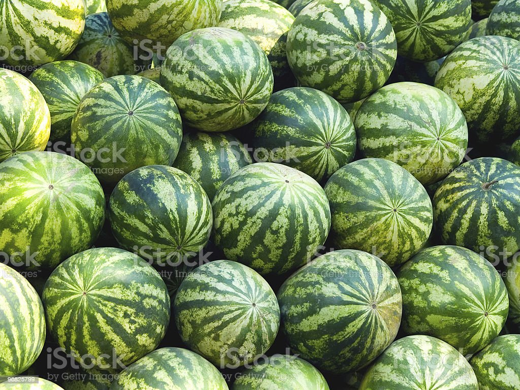 Water melons royalty-free stock photo