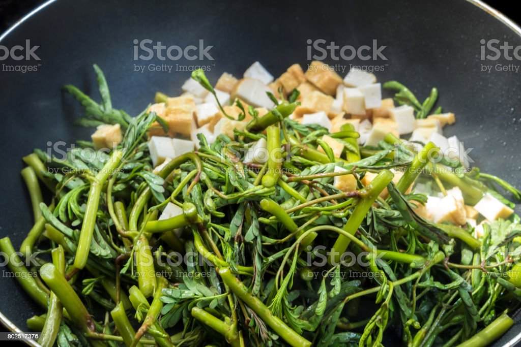 Water minosa and tofu cubes cooking in pan stock photo
