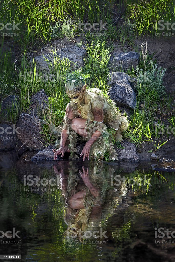 Water Nymph Gazing at Reflection stock photo