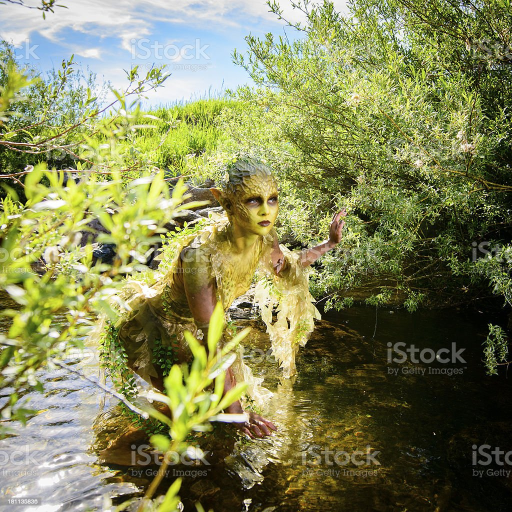 Water Nymph royalty-free stock photo