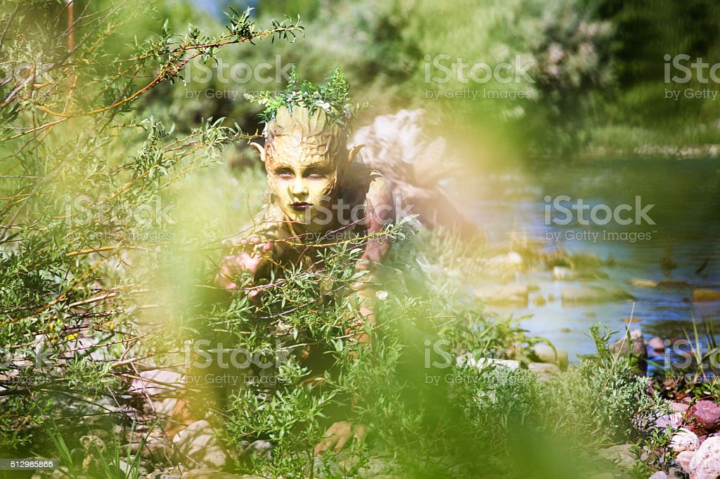 Water Nymph slowly crawling out of shallow river stock photo