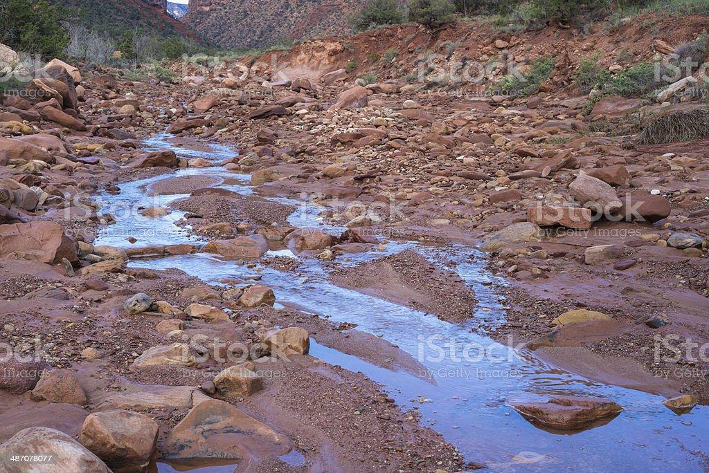 Water Oasis Creek Flowing in Desert royalty-free stock photo
