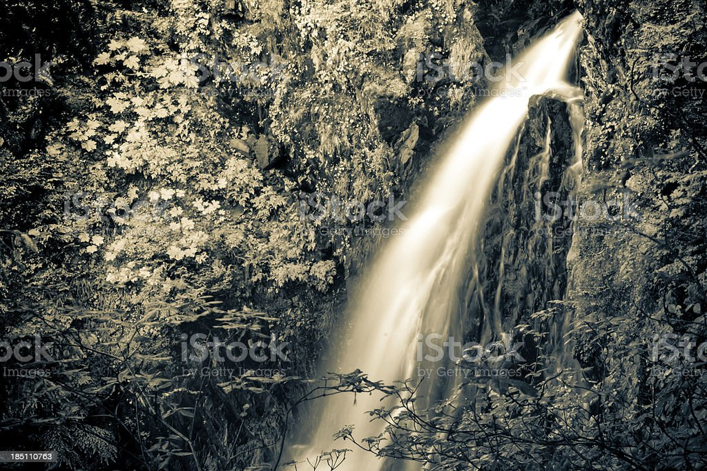 Water of Life royalty-free stock photo