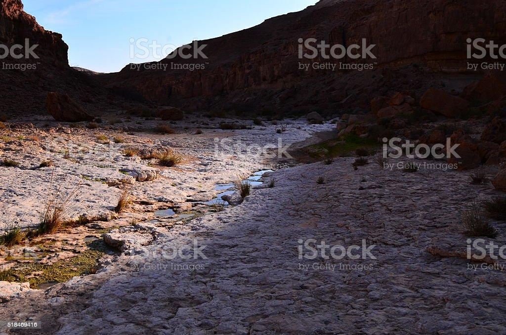 Agua de vida foto de stock libre de derechos